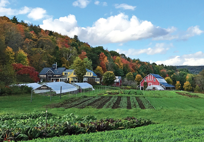 Sunrise Farm, nestled in the hills of Hartland